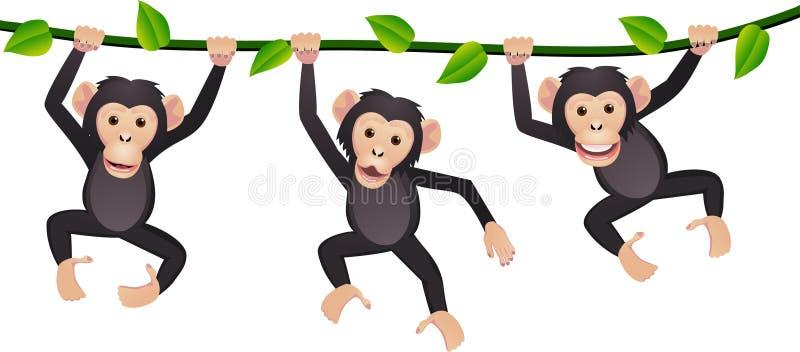 Download Three chimpanzee stock vector. Image of cartoon, illustration - 17775184
