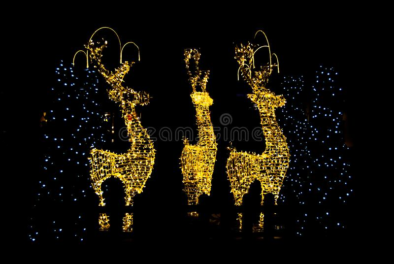 Three Christmas lights reindeer in the dark night stock photos