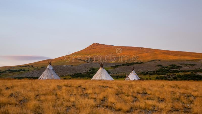 Three chums in tundra in summer morning. Three chums in the tundra in the summer morning, Yamal, Russia stock image