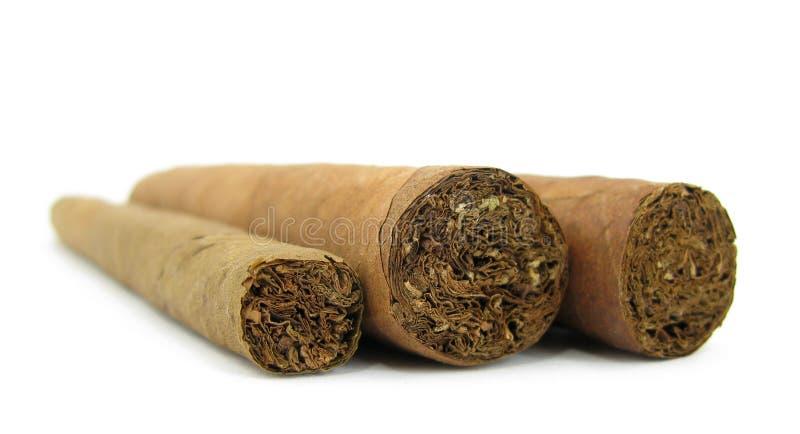 Three cigars stock photos
