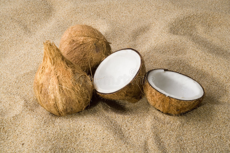 Three Coconuts On The Sand Royalty Free Stock Image