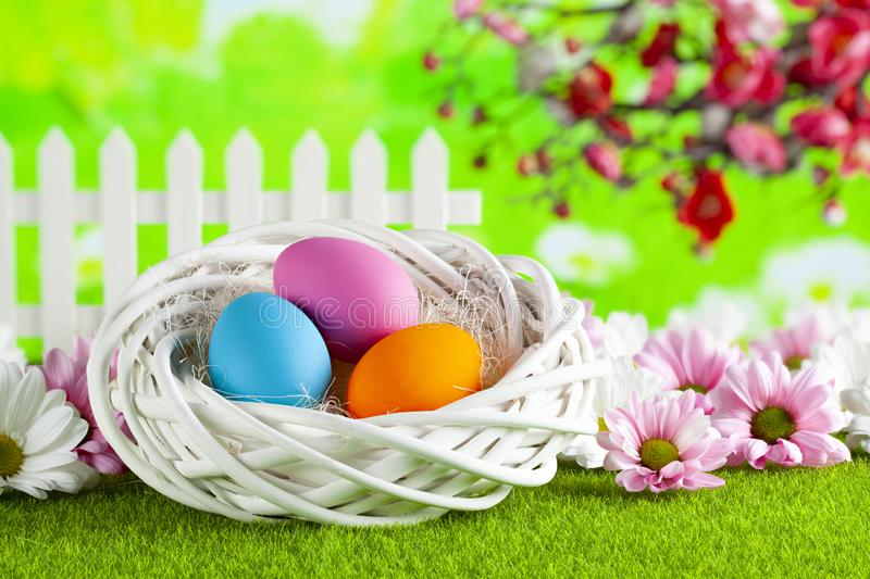 Three colored Easter eggs and flowers on springtime background stock photos