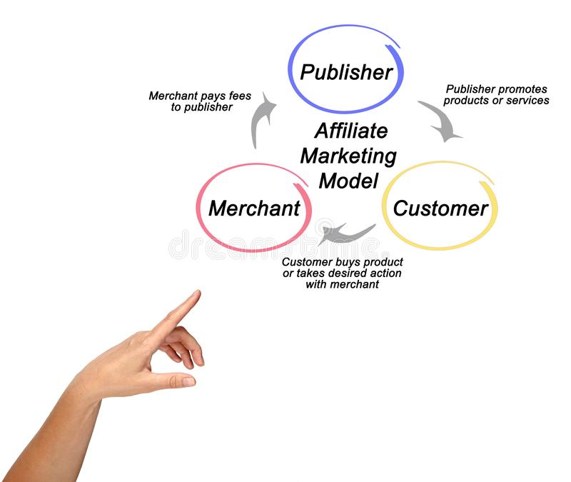 Components of Affiliate Marketing Model stock photo