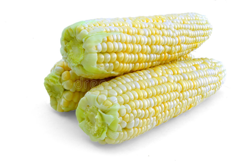 Download Three Corn Cobs stock photo. Image of vegetable, corn - 4459864
