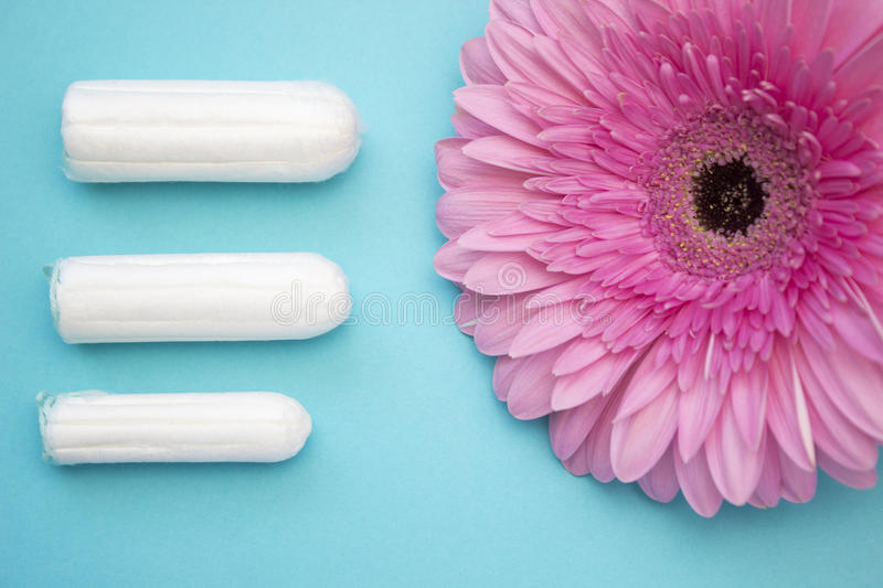 Three cotton tampons for menstrual blood period and pink gerbera flower. Woman hygiene conception photo. Soft tender protection fo stock images