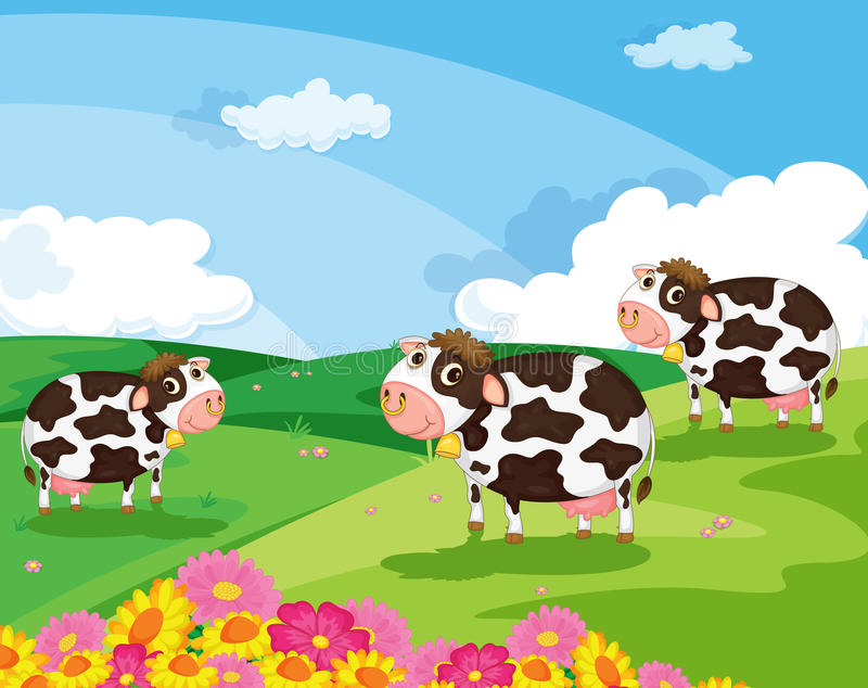 Download Three cows stock illustration. Illustration of domestic - 24195867