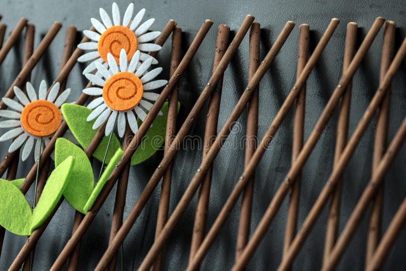 Three Daisy Flowers On Wooden Trellis royalty free stock images