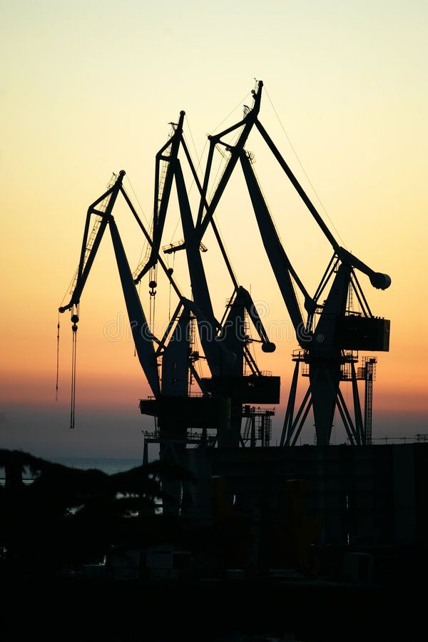 Three crane royalty free stock images