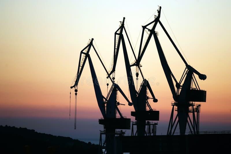 Three crane stock photography