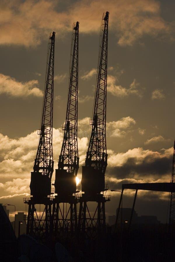Three Cranes Stock Photography