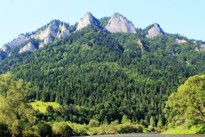 Three Crowns peak in Pieniny mountains at summer, Poland.  stock image