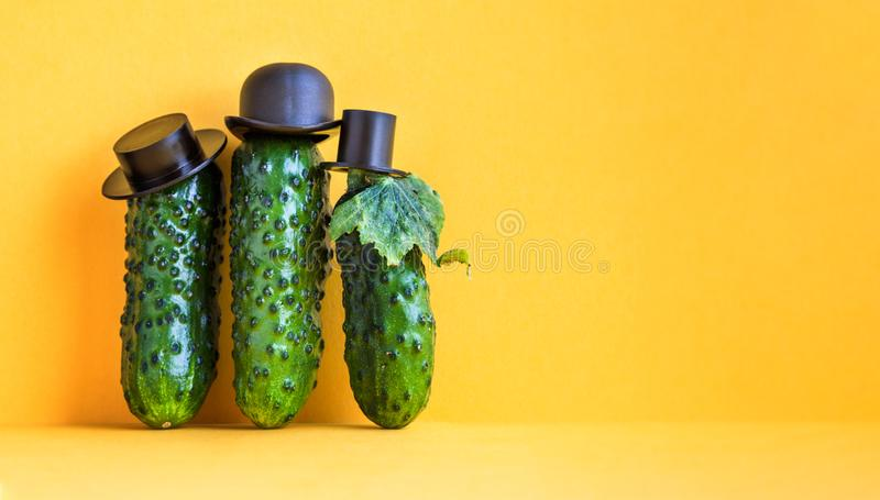 Three cucumbers old fashioned characters with black hats. yellow background, creative design food poster. copy text.  stock photos