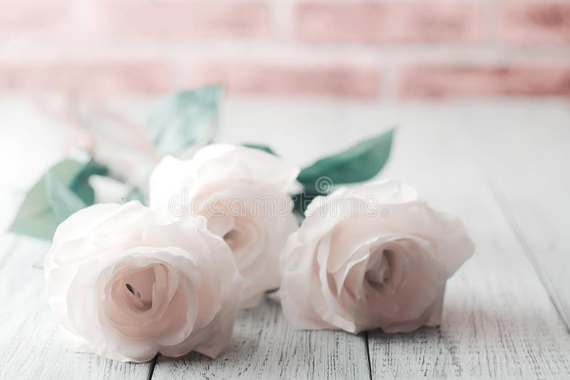 Delicate roses on wooden white background with brick wall stock photos
