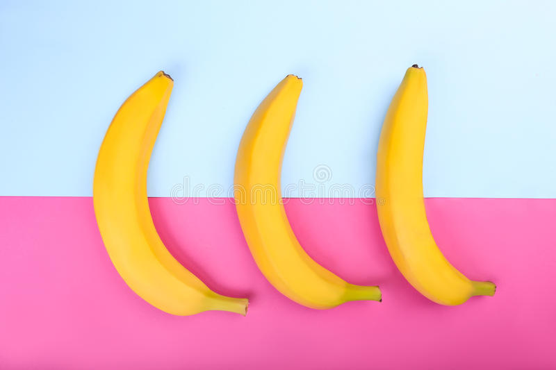 Three delicious, exotic, sweet saturated yellow bananas on a bright pink and blue background. A colorful composition of three sweet, tropical bright yellow royalty free stock photos