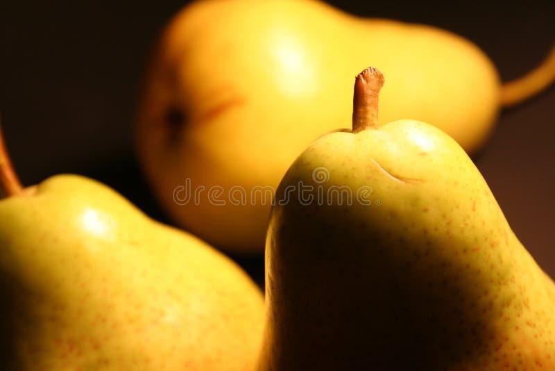 Three delight pears stock photo