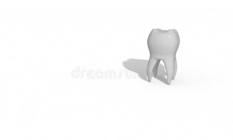 Three dimensional tooth model made for health vector illustration