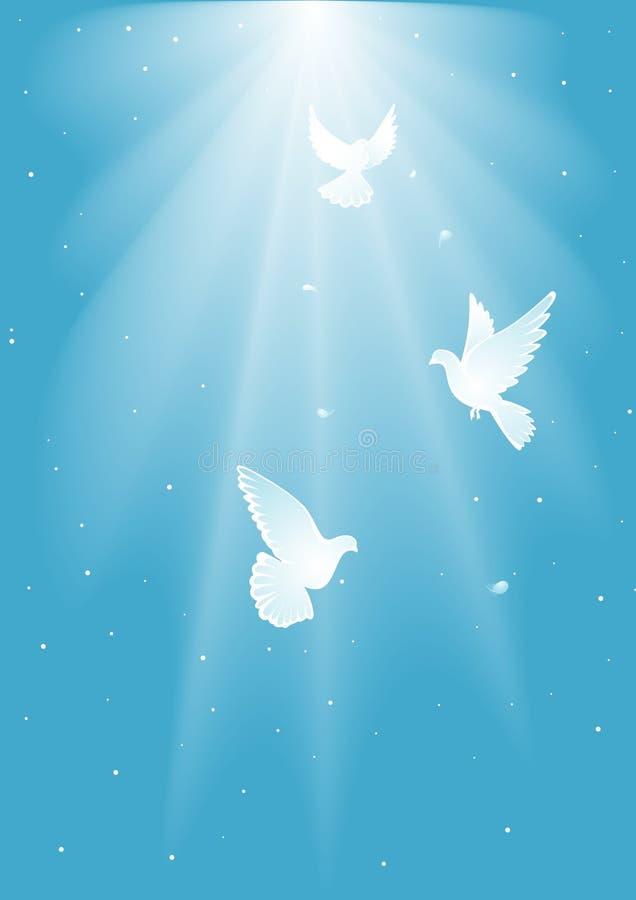 Three dove royalty free illustration