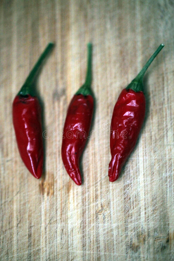 Three dried chillies stock photography