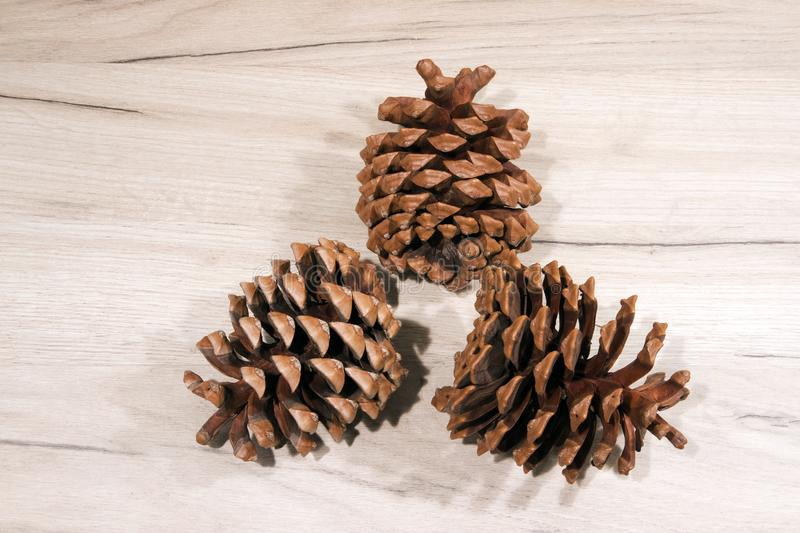 Three dried ripe opened cedar cones with seeds removed on wooden board stock images