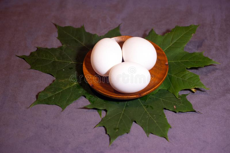 Three eggs on maple leaves stock photography