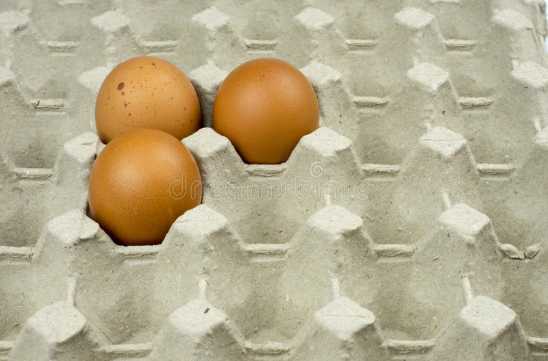 Three eggs in paper tray royalty free stock photo