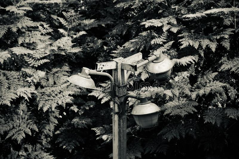 Three electric metallic lampshades of a street lampposts in Bangalore stock images