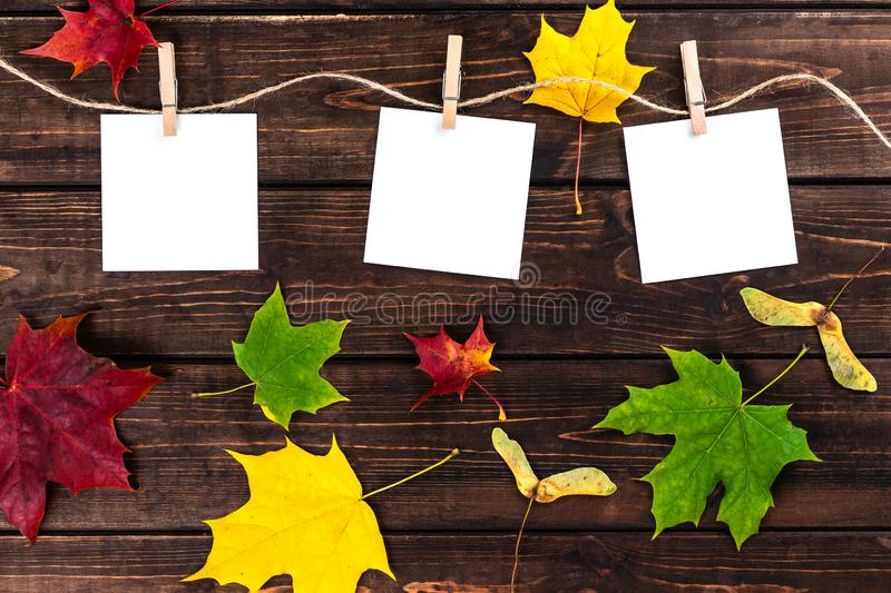 Three empty little sheets of paper hold by wooden clothespins on a string. Autumn composition. Dark wooden brown background. royalty free stock photo