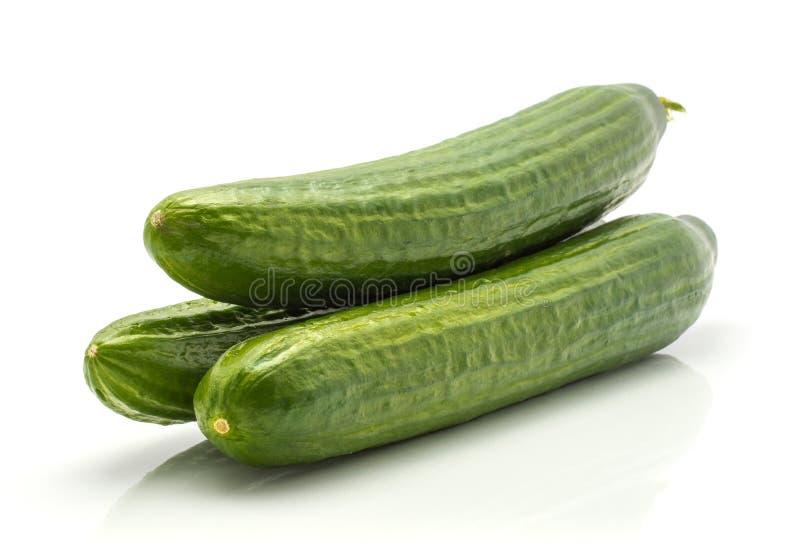 Fresh hothouse cucumber on white stock image