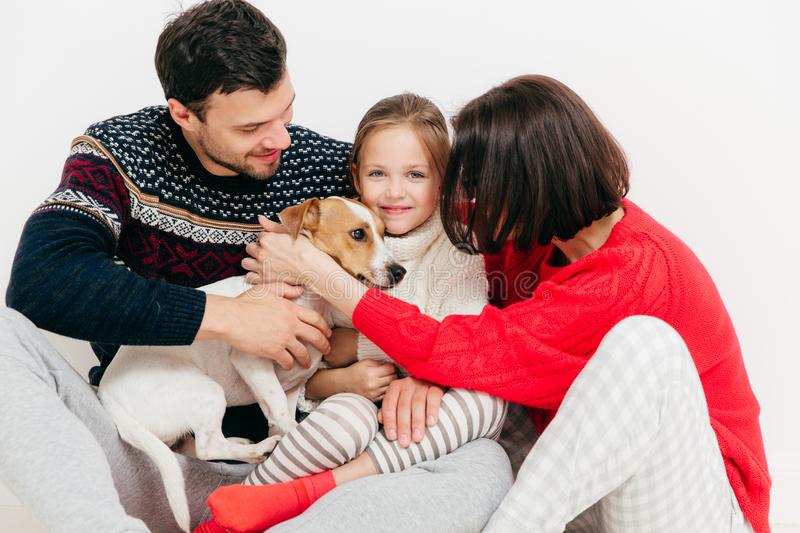 Three family members bought pedigree jack russell terrier dog, h stock images