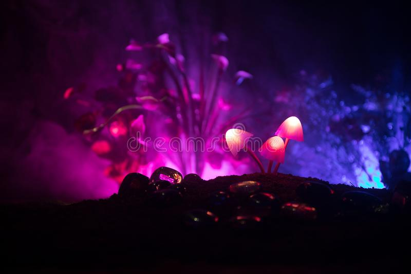 Three fantasy glowing mushrooms in mystery dark forest close-up. Beautiful macro shot of magic mushroom or three souls lost in ava royalty free stock photography