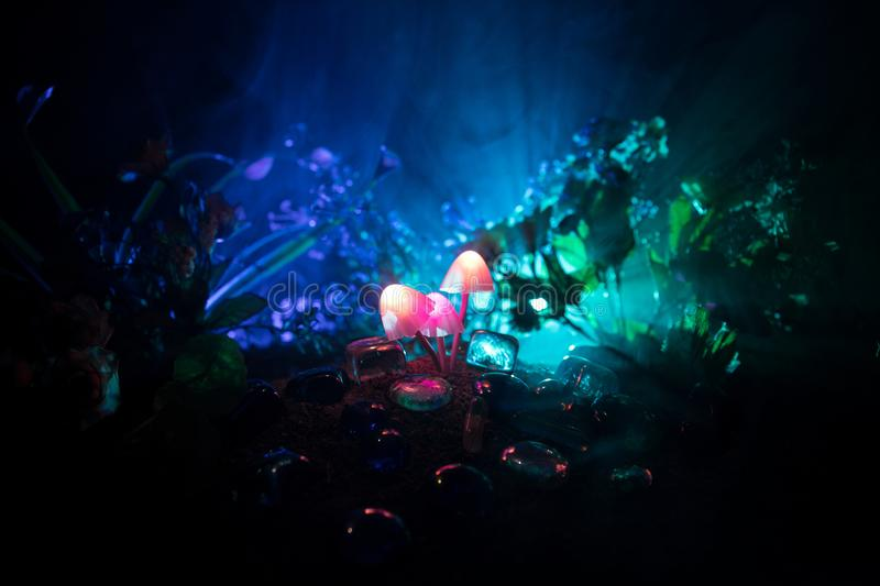 Three fantasy glowing mushrooms in mystery dark forest close-up. Beautiful macro shot of magic mushroom or three souls lost in ava royalty free stock image