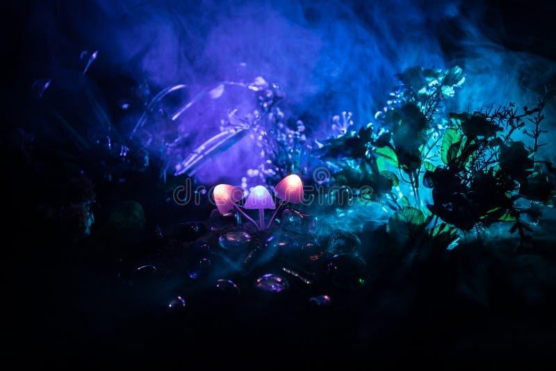 Three fantasy glowing mushrooms in mystery dark forest close-up. Beautiful macro shot of magic mushroom or three souls lost in ava stock photo