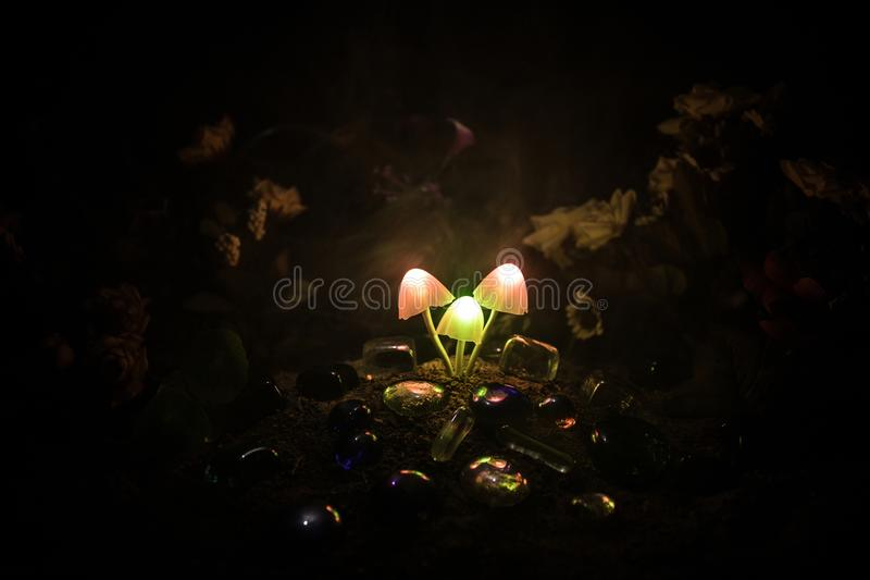 Three fantasy glowing mushrooms in mystery dark forest close-up. Beautiful macro shot of magic mushroom or three souls lost in ava royalty free stock photos
