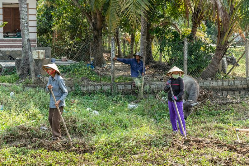 Three Farmers with hoe take a rest in Nha Trang, Vietnam. Nha Trang, Vietnam - March 11, 2019: Phuoc Trach rural neighborhood. Three farmers doing manual labor stock images