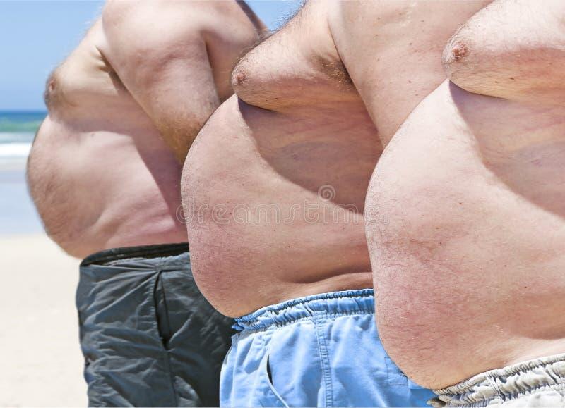 Three fat men on a beach royalty free stock photos