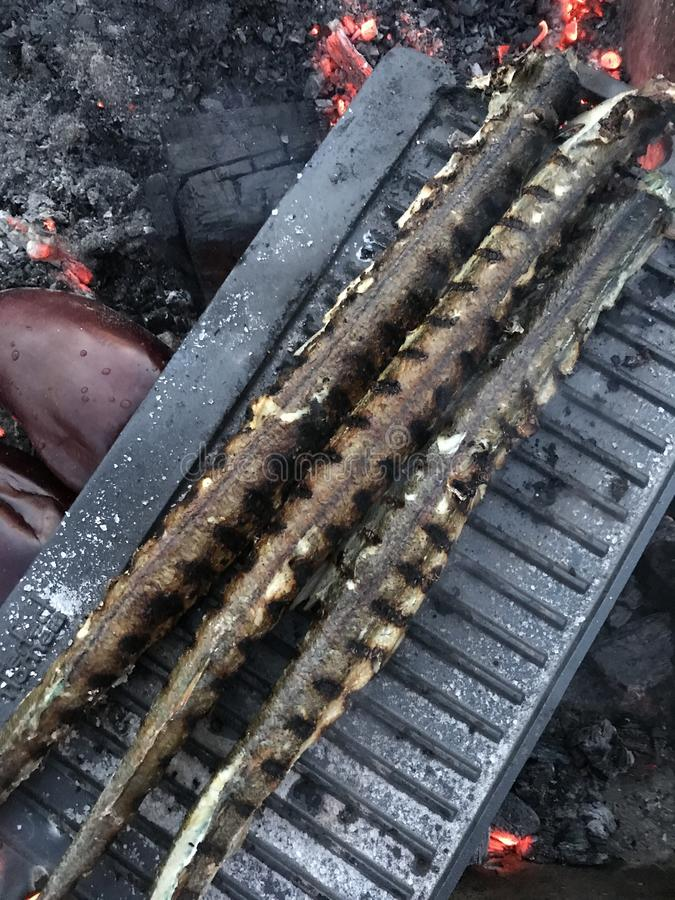 Three fish on grill - outdoor cooking royalty free stock image