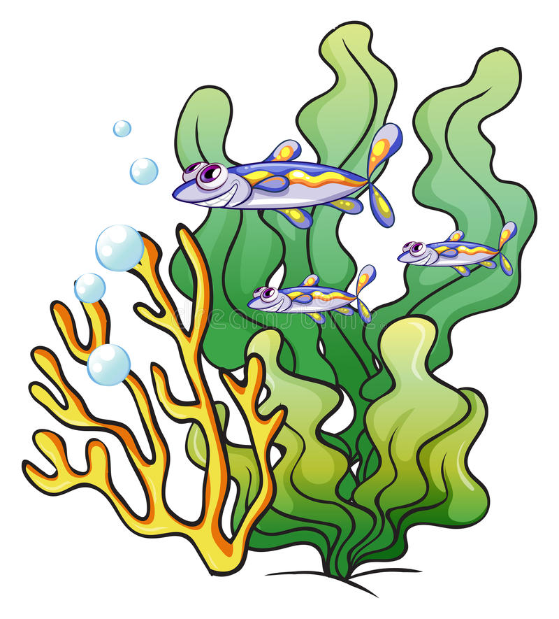 three fishes under the sea near the seaweeds stock vector rh dreamstime com under the sea clip art free under the sea clipart