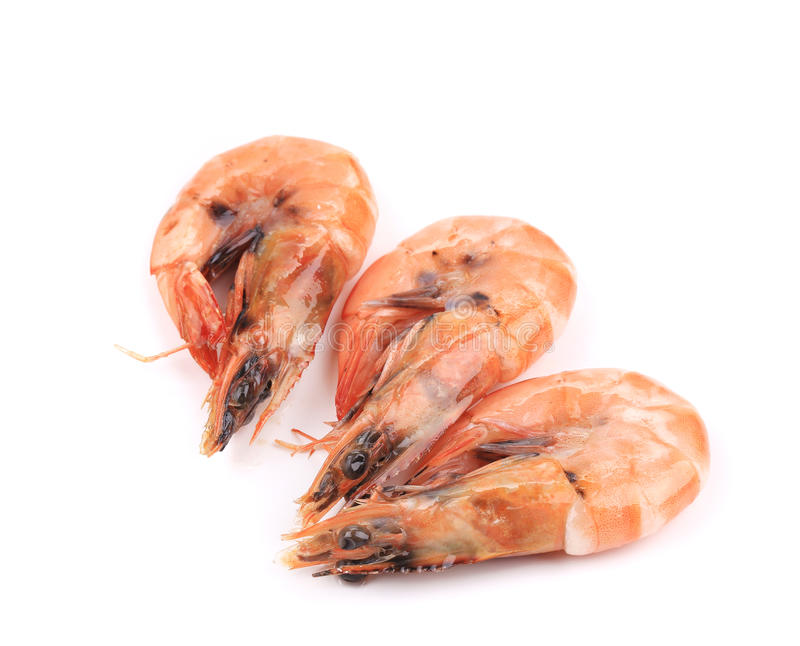 Download Three Fresh Boiled Shrimps. Stock Photo - Image: 38458888