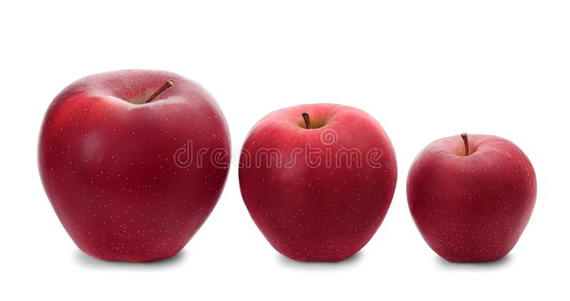 Three fresh red apples in a row. Big, middle and small fresh red apples in a row isolated on white background. Three different sized apples royalty free stock photo