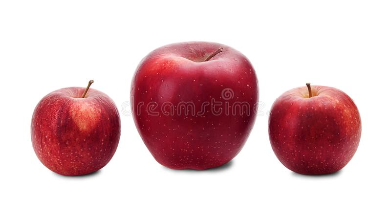 Three fresh red apples in a row. Big and small fresh red apples in a row isolated on white background. Different sized apples royalty free stock images