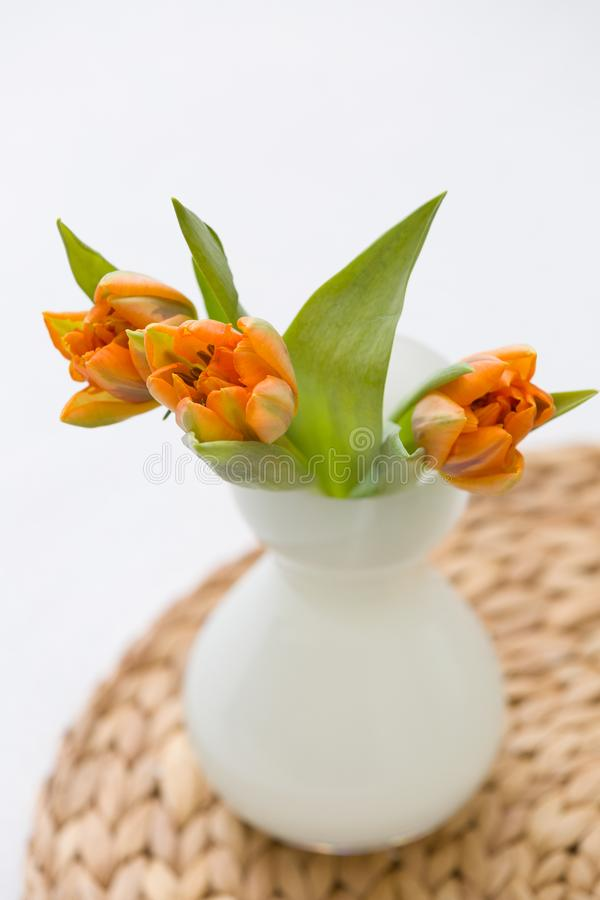 Three fresh spring orange tulips in a nice white glass vase on the straw board. Home decor for spring and Easter royalty free stock image