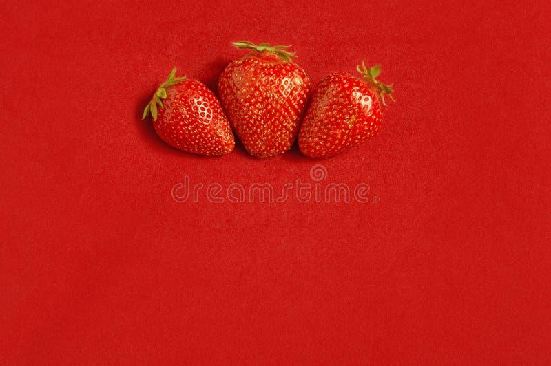 Three fresh strawberries on red textile background stock photo