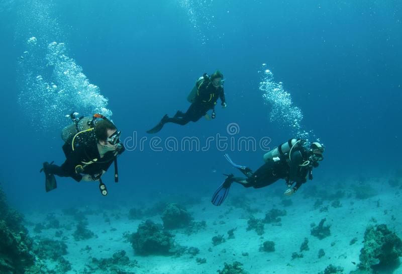 Three friends scuba diving together. On reef