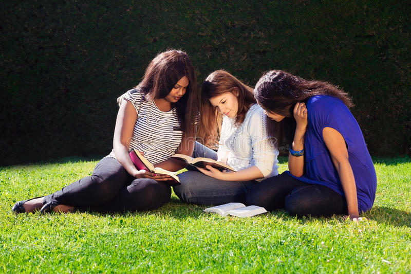 Three Friends Studying Together in Nature stock photo