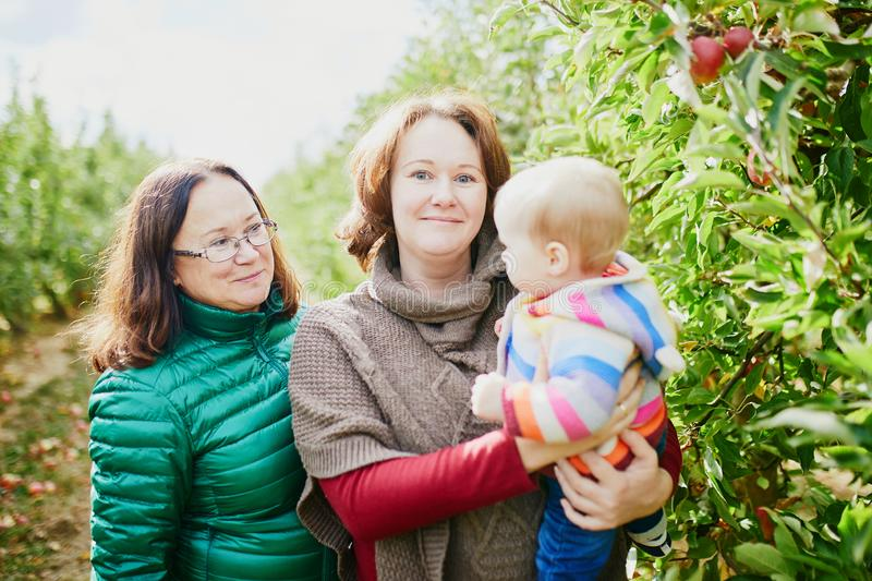 Three generations family - grandmother, mother and granddaughter. Spending time together outdoors on a fall day royalty free stock photo