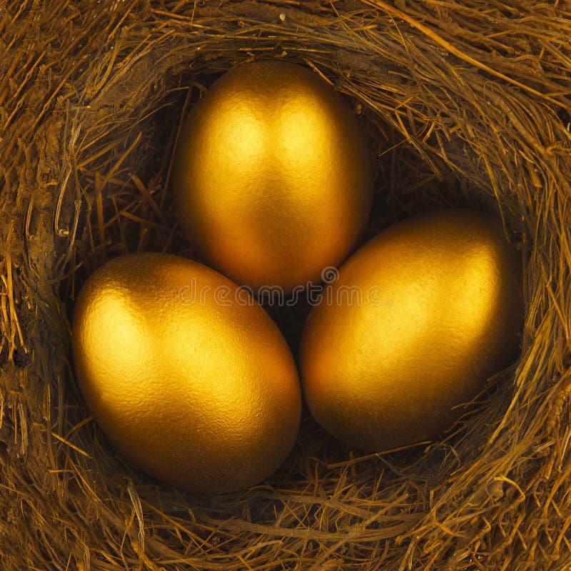 THREE GOLDEN EGGS IN BIRDS NEST