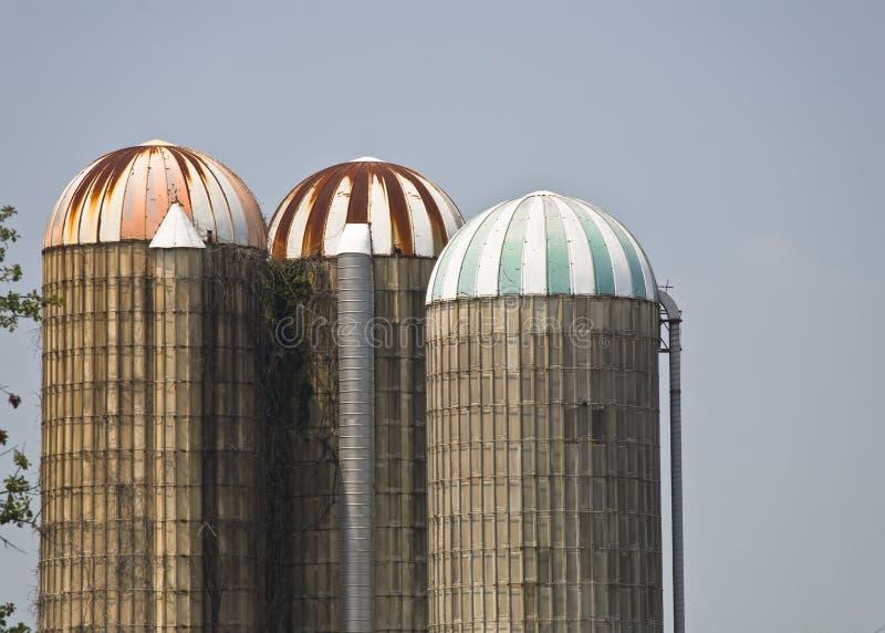 Three Grain Silos stock image