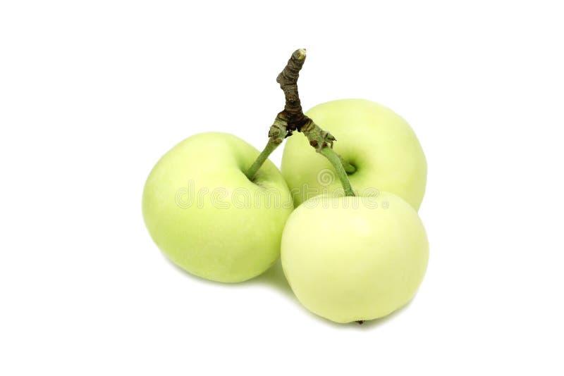 three green apple stock images