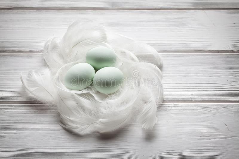 Three green easter eggs and white feathers royalty free stock image
