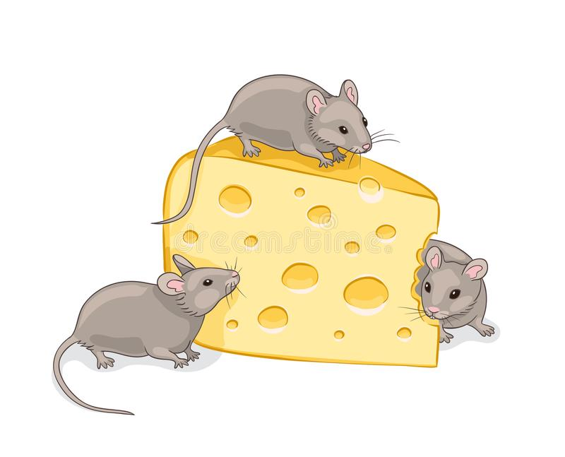Three grey mice with a piece of cheese stock illustration